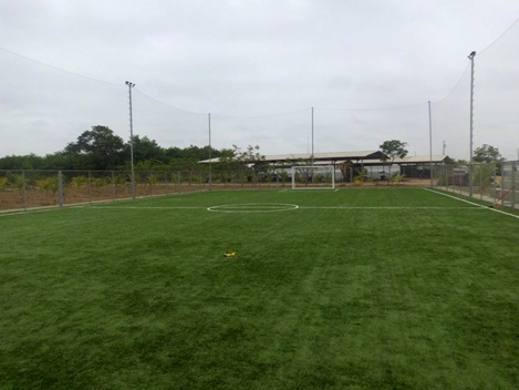 Canchas de cesped natural guayaquil guayaquil guayas - Cesped natural ...