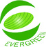 EVERGREEN ELECTRIC S.A.