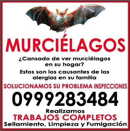 FUMIGACIONES Y SERVICIOS / CONTROL DE PLAGAS 0999283484