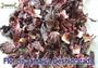 Flor de Jamaica Deshidratada 50 Gramos Precio $ 1.40 USD